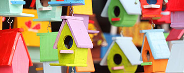 Colourful little bird houses